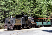 The Sugar Pine Railroad